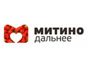 Логотип Даналит