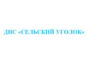 Логотип ДНС Сельский уголок