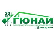 Логотип Гюнай