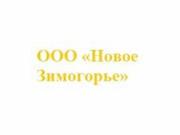 Логотип Новое Зимогорье
