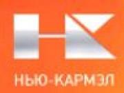Логотип Нью-Кармэл