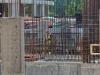 Жилой комплекс Bauman house — фото строительства от 07 февраля 2020 г., пятница - #2142945794