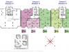 "Схема квартиры в проекте ""Dominion (Доминион)""- #407553348"