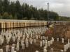Жилой комплекс Сказочный лес — фото строительства от 07 февраля 2020 г., пятница - #562379948