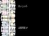 "Схема квартиры в проекте ""Западный бастион""- #676376211"